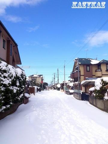 雪の後.jpg