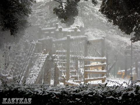雪跳ね.JPG